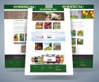 Sreen-Shots der neuen WASGAU-Webseite