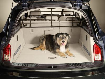 Passt perfekt: Das Hundeschutzgitter im Opel Insignia Sports Tourer macht auch für den Vierbeiner die Reise sicherer