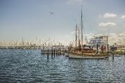 Wer historische Schiffe bevorzugt, fährt in den Museumshafen Wendtorf: Hier kann beispielsweise ein Wikingerschiff aus der Nähe betrachtet werden, ebenso wie ein Wadenboot, ein Krabbenkutter und eine Quase Bild: www.ostsee-schleswig-holstein.de/Oliver Franke