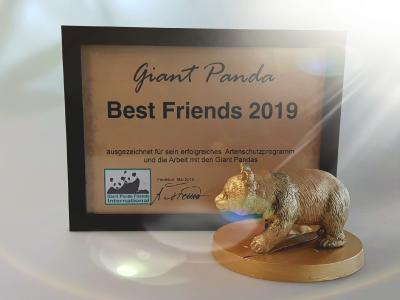 Giant Panda Best Friends Award 2019