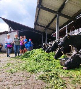 Die Milchviehhaltung ist nur ein Standbein des Demeterhofs Schwalmtal in Hopfgarten. Foto: Mario Hanisch/Vogelsbergkreis