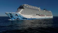 Delivery of Norwegian Bliss