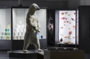 "Blick in die Dauerausstellung ""Ästhetik der Natur"" © Museum Wiesbaden, Foto: Bernd Fickert"