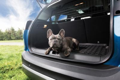 Sicher und sauber: Gehen Haustiere mit dem Opel Crossland X auf Reisen, sorgt ein stabiles Laderaumgitter dafür, dass diese im Falle einer Vollbremsung im Kofferraum bleiben. Die Laderaumschale hält den Boden des Heckabteils sauber
