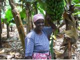 Kleinbauern in Afrika
