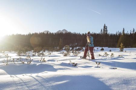 Gehen und Träumen im Schnee