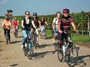 E-Bike  Probefahren im Urlaub und am Wochenende  - genussradeln-pfalz Programm 2012 1