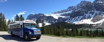 Mit dem Bus durch Alaska / Foto: elan sportreisen