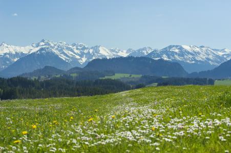Frühling in den Hörnerdörfern im Allgäu