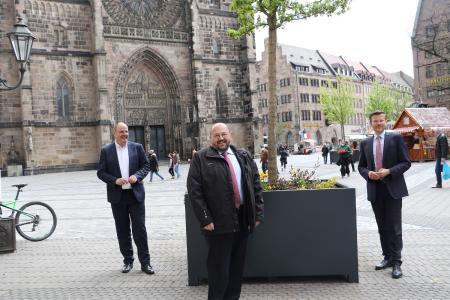 Foto (Jochen Henning, VGL Bayern) v.l.: Christian Vogel, Bürgermeister und Erster Werkleiter des Servicebetriebs Öffentlicher Raum (SÖR) der Stadt Nürnberg, Gerhard Zäh, Präsident des VGL Bayern, und Marcus König, Oberbürgermeister von Nürnberg, bei der Baumübergabe an die Frankenmetropole.
