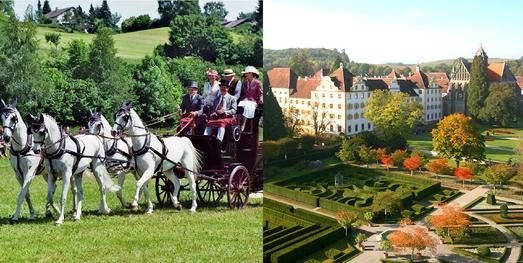 Edle Pferde - historische Kutschen im Linzgau am Bodensee