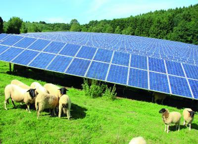 7x7 Referenzobjekt: Solarpark in Dietzhölztal.