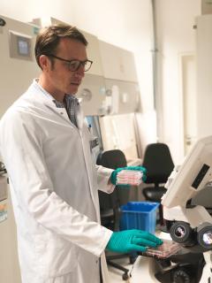 Dr. med. Timon Seeger mit Zellkulturen in seinem Labor im Universitätsklinikum Heidelberg, Foto: Universitätsklinikum Heidelberg