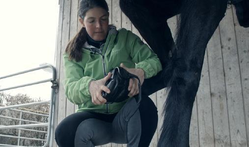 Swiss Galoppers - Das Anlegen der Schuhe gestaltet sich völlig unkompliziert und schnell