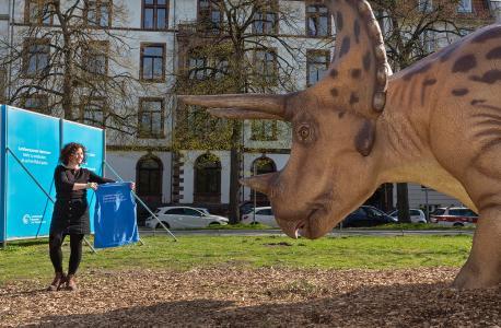 DinoScout mit Triceratops horridus low (c) Landesmuseum Hannover