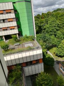 """Der """"natürlichste Wärmeschutz der Welt"""" ist die Begrünung von Dachflächen. Zusätzlich werden Mini-Biotope geschaffen"""