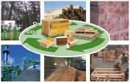 Schachtel, Verpackungen und Paletten aus nachhaltig erzeugtem Holz - Teil des geschlossenen CO2-Kreislaufs, Quelle: FEFPEB