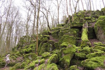 Der Alteburgskopf – eine beeindruckende Felsformation oberhalb von Schotten (Foto: Susanne Jost)