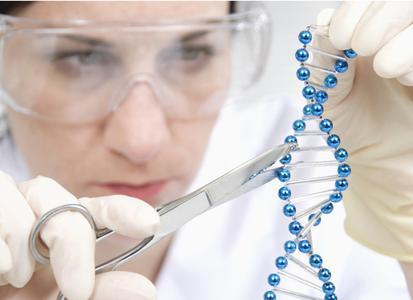 """Bei der Regensburger Geneart AG entwickeln Wissenschaftler künstliche Gene, die als """"winzige Helfer"""" die Motoren für die Biotech-Innovationen von morgen sind – vom Aids-Medikament bis zum Biokraftstoff. Foto: obx-news"""