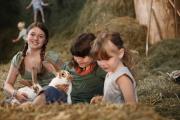 Dorferlebnis für die ganze Familie © Hochschwarzwald Tourismus GmbH