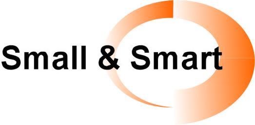 Small und Smart Logo