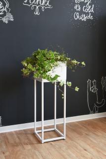 Schlichte Eleganz jetzt auch für Zimmerpflanzen - VIVANNO bietet ästhetische Alternative zu massiven Pflanzkübeln