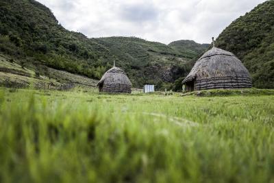 World Vision ist Partner der UN-Dekade zur Restaurierung der Ökosysteme / Foto: World Vision
