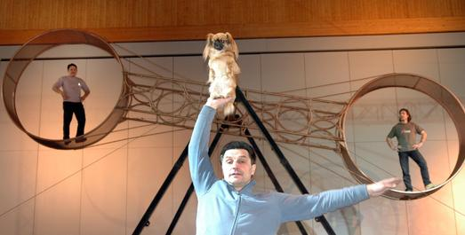 """Magisch, komisch, tierisch: Auch dieses Jahr öffnet sich wieder die """"IBO-Manege"""" in Halle A2: Magier André Sarrasani kommt mit der Show """"Circussterne"""" nach Friedrichshafen. Mit dabei: """"Leo s Dogshow"""", und das Todesrad"""