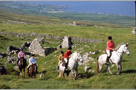 Wanderreiten in irland