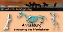 Annelie Michels   Rund um die Anatomie des Pferdes