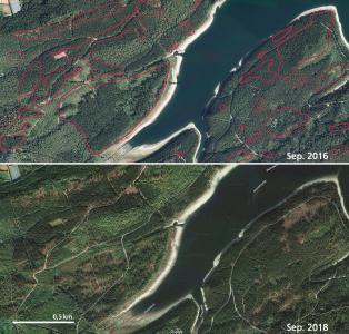 Luftbilder des Waldes an der Granetalsperre im Harz im Vergleich zwischen September 2016 und 2018. In den rot markierten Bereichen sind Veränderungen des Waldes durch Sturm und Borkenkäfer deutlich. Die Zeitreihe wird nun durch Bilder aus dem September 2019 ergänzt. (Bilder: NLF (oben)/Google (unten))