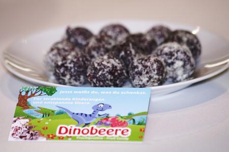 Paloneo - Die Dinobeere - der natürliche Süßigkeitsheld