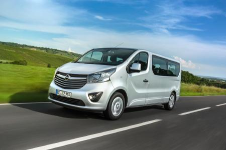 Top dog: The Opel Vivaro offers up to 5900 liters of luggage volume for people and pets in XXL format, such as Irish Wolfhounds