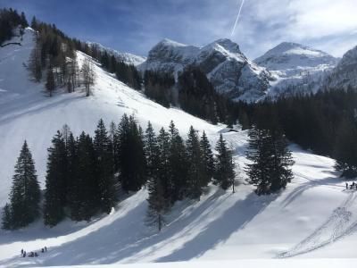 Alpenkokstage im Nationalpark