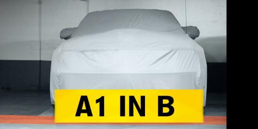 a1inb