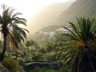 La Gomera für Singles_Singleurlaub Kanaren