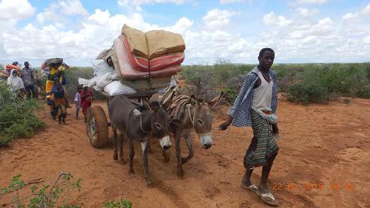 Tausende Menschen mussten ihr Dörfer in Somalia verlassen. (© action medeor)