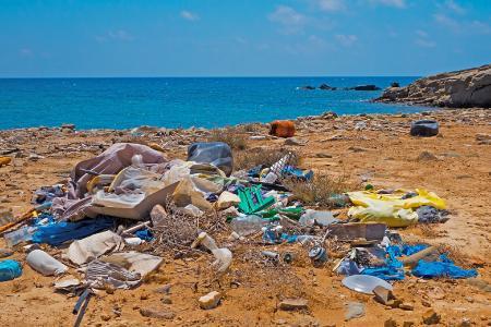 Plastikmüll am Strand wird zur Gefahr für Tiere