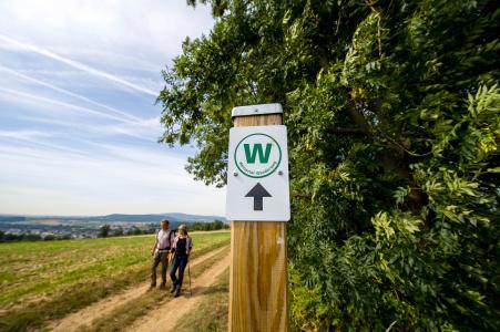 In Bad Nauheim gibt es fünf ausgewiesene Rundwanderwege, die sich verschiedenen Themen widmen.
