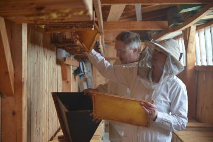 die honigs e erlebniswelt der bienen botschafter aus niederbayern newswork ag. Black Bedroom Furniture Sets. Home Design Ideas