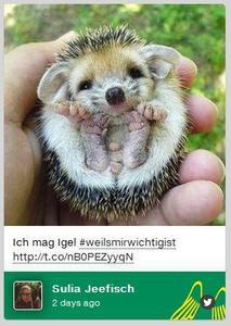 Provinzial Rheinland startet Hashtag-Kampagne #weilsmirwichtig