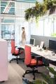 Sowohl das aktiv-dynamische Sitzen als auch höhenverstellbare Schreibtische sind weiterhin auf dem Vormarsch und bieten eine willkommene Abwechslung für Ihren Rücken. / Bild: Dauphin/ AGR