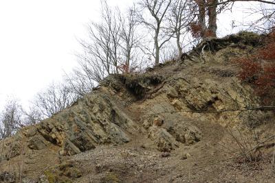 """Das Geotop """"Muschelkalkkante am Sonnberg"""""""