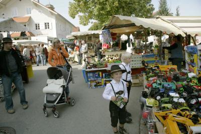 Viehscheid Wertach / Bild: Touristinfo Wertach