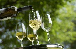 Die Deutschen bevorzugen zunehmend trockene Weine
