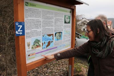 """Auf dem Informationsschild zum """"Zeitpfad"""" steht viel Wissenswertes: Unter anderem auch, in welchem Erdzeitalter die Muschelkalkkante entstanden sein dürfte"""