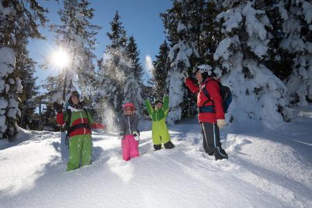 Ski Jweil Alpbachtal Wildschönau  Santner