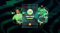 VfL Wolfsburg Männer - Alles über die Mannschaft