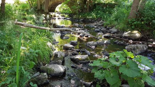 Ab sofort darf kein Wasser mehr aus Bächen, Flüssen und Seen entnommen werden. Unser Foto zeigt den Eisenbach unterhalb des Schlosses bei der Bogenbrücke / Foto: Steuber/Vogelsbergkreis