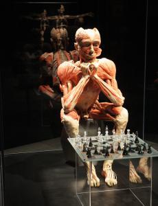 KOERPERWELTEN Schachspieler